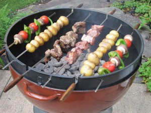 Weber Shish Ring in action