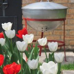 original weber kettle grill