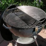NeoTrout's Elevated Half Grill